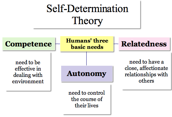 Bildresultat för self determination theory